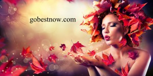 gobestnow hair and beauty salons